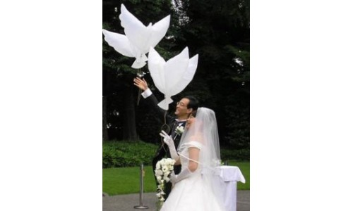 Свадебные надувные голуби