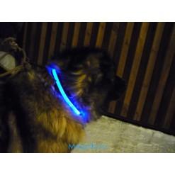 Ошейник для собаки светящийся (XXXL)