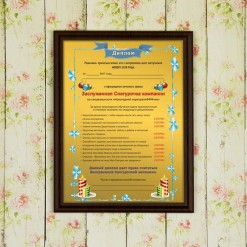 Подарочный диплом (плакетка) *Заслуженная Cнегурочка компании*