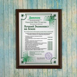 Подарочный диплом (плакетка) *Лучший экономист на Земле*