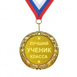 Медаль *Лучший ученик класса*