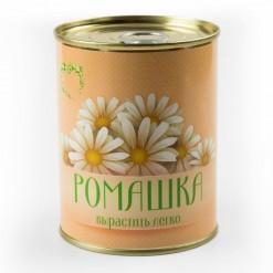Цветок в банке *Ромашка*