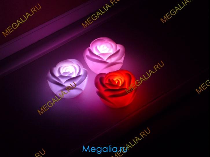 Роза световая